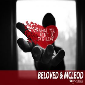 DJ Beloved, Mcleod - What You Won't Do For Love [Quantize Recordings]