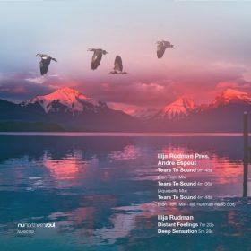 Ilija Rudman - Tears To Sound [NuNorthern Soul]