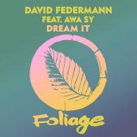 David Federmann - Dream It [Foliage Records]