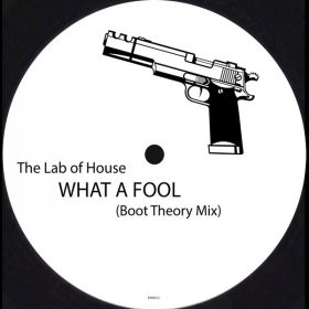 The Lab Of House - What A Fool (Boot Theory Mix) [Raw Recordings]