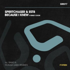 Spiritchaser, Est8 - Because I Knew [Guess Records]