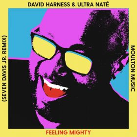 David Harness & Ultra Nate - Feeling Mighty [Moulton Music]