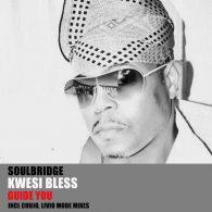 Soulbridge feat. Kwesi Bless - Guide You, Pt. 1 [HSR Records]