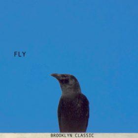 Brooklyn Classic - Fly [Funkskool Digital]