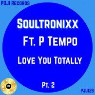 Soultronixx - Loving You Totally Pt.II [POJI Records]