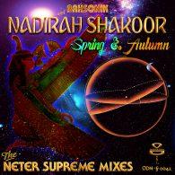 BahSonik & Nadirah Shakoor - Spring & Autumn (Neter Supreme Mixes) [Original Drum Hsi]
