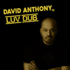 David Anthony - Luv Dub [Planet Hum]