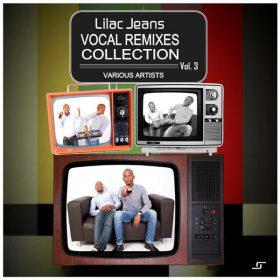 VA - Vocal Remixes Collection, Vol. 3 [Lilac Jeans Records]