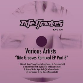 Various - Nite Grooves Remixed EP, Part 6 [Nite Grooves]
