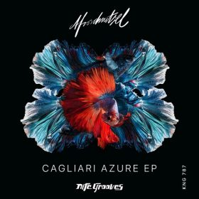 Afroschnitzel - Cagliari Azure EP [Nite Grooves]