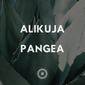 Alikuja - Pangea [Offering Recordings]