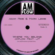 AMFlow, JT - Where You Belong [AMFlow Records]