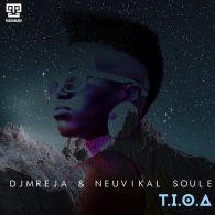 DJMreja & Neuvikal Soule - T.I.O.a [Kazukuta Records]