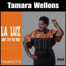 Tamara Wellons, DJ Oji - La Luz (Don't Stop The Shine) [POJI Records]