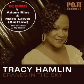 Tracy Hamlin, DJ Oji - Cranes In The Sky (Remixes) [POJI Records]