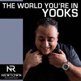 Yooks - The World You're In [Newtown Recordings]