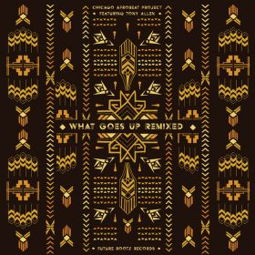 Chicago Afrobeat Project - What Goes Up (Remixes) [Future Rootz]