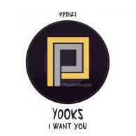 Yooks - I want you [Plastik People Digital]