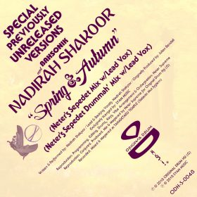 BahSonik & Nadirah Shakoor - Spring & Autumn (Neter Supreme Previously Unreleased Versions) [Original Drum Hs]