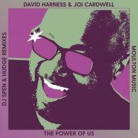 David Harness, Joi Cardwell - The Power Of Us (DJ Spen & Hudge Remixes) [Moulton Music]