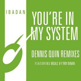 Kerri Chandler, Jerome Sydenham - You're In My System (Dennis Quin Remixes) [Ibadan Records]