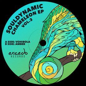 Souldynamic - Chameleon EP Volume 3 [Excedo]