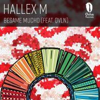 Hallex M, QVLN - Besame Mucho [Ocha Records]