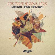 Medsound, Gavio, Nic Joseph - Crossed Signals Vol. 9 [Salted Music]