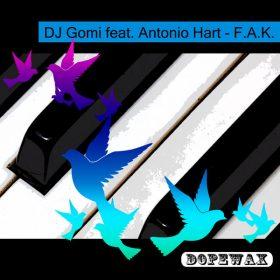 DJ Gomi, Antonio Hart - F.A.K. [Dopewax]