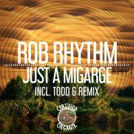 Rob Rhythm - Just A Mirage [Certified Organik Records]