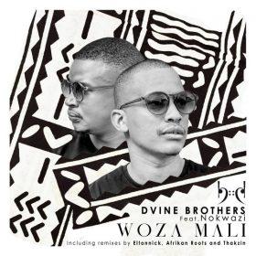 Dvine Brothers, Nokwazi - Woza Mali (Incl Eltonnick, Thakzin and Afrikan Roots Remixes) [Baainar Digital]