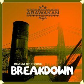 Realm Of House - BreakDown (Arawakan Drum Mix) [Arawakan]