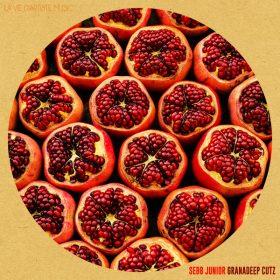 Sebb Junior - Granadeep Cutz [La Vie D'Artiste Music]