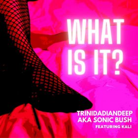 Trinidadiandeep feat. Kali - What Is It [bandcamp]