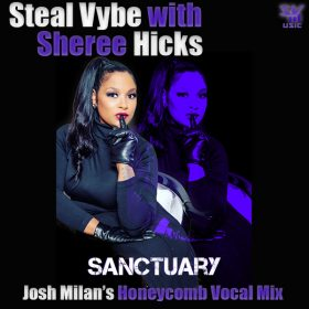 Chris Forman ,Damon Bennett, Sheree Hicks - Sanctuary (Josh Milan's Honeycomb Vocal Mix) [Steal Vybe]
