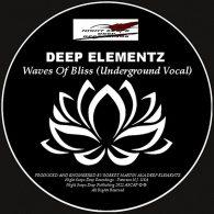 Deep Elementz - Waves Of Bliss [Night Scope Deep Recordings]