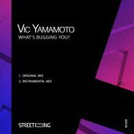 Vic Yamamoto - What's Bugging You [Street King]